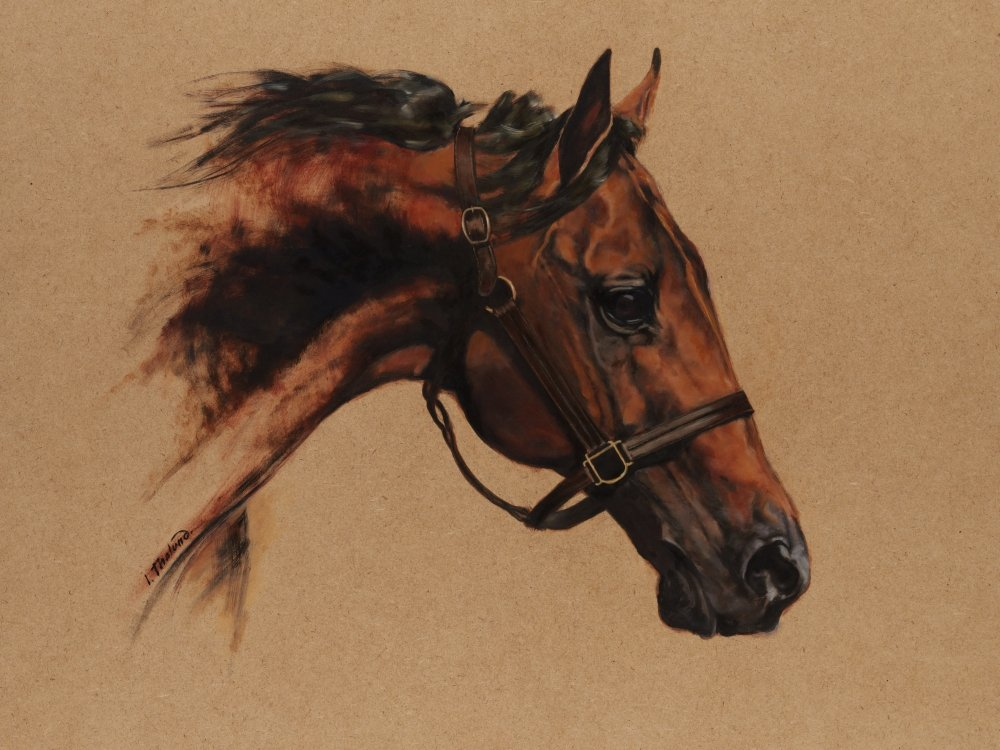 Racehorse. Oil on unvarnished board. Has to be framed as the paper works, just as safety precaution